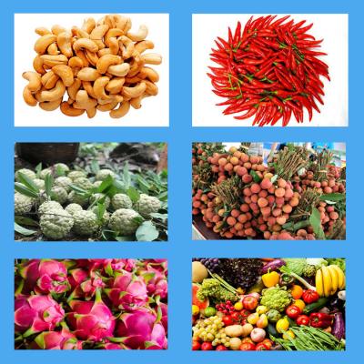 Một số loại nông sản xuất khẩu